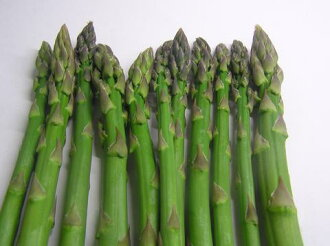 Special cultivated green asparagus 100 g