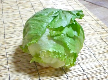 ◎ An organic farming or one natural agricultural methods lettuce