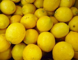 K. shichiro Grandpa organic Lemon 2 kg * size mixture * skin color is still blue if you must.