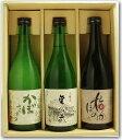 【日本酒&リキュール詰合せギフトセット】<浪乃音ギフト-3-01>浪乃音の無名蔵 本醸造酒