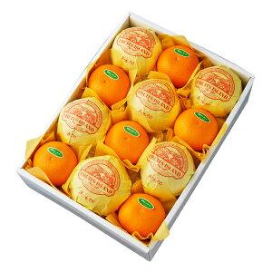 美生柑&清見オレンジ12入