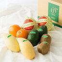 【公式】 新宿高野 Day Fruit デイフルーツセットA...