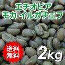 【送料無料(北海道・沖縄を除く)】 コーヒー 生豆 エチオピア モカ イルガチェフG1 2kg 同梱分類【A】