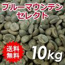 水, 飲料 - 【送料無料(一部地域を除く)】生豆 ブルーマウンテン セレクト 10kg(5kg×2)