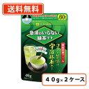 【送料無料(一部地域を除く)】三井銘茶 急須のいらない緑茶です 40g×48個(24個×2ケース)