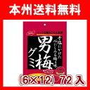 (本州送料無料!)ノーベル 男梅グミ (6×12)72入