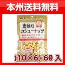 (本州送料無料)稲葉ピーナツ 素煎りカシューナッツ (10×6)60入