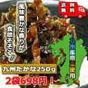 【送料無料】(太陽漬物)九州たかな250g×2袋【メール便対応】たかな・タカナ・たか菜・高菜・たかな漬け・高菜の漬物 たかなの漬物