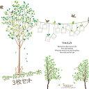 ウォールステッカー木 18枚から選べる3枚セット [ウォールステッカー 北欧][ウォールステッカー ツリー] 木 ・ 植物 フォトフレーム..