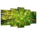 インテリア 絵画アートパネル 春 新緑の森 壁掛け 風景写真 絵画 ポスター キャンバス絵画 完成品5枚パネルセット 特大サイズで大迫力!