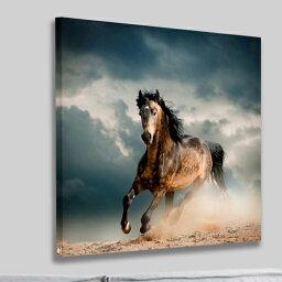 送料無料 絵画 アートパネル馬 おしゃれ 壁掛け 馬の絵 一馬駆行く絵  風水開運画 Airbnb民泊シェアハウス装飾フォトフレーム付き 横50cm×縦50cm