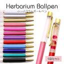 【ハーバリウムペン】選べるカラー