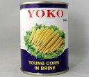 玉米筍S26〜30本【ヤングコーン水煮 ホール】540g/3号缶詰業務用食材