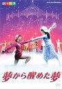 夢から醒めた夢 劇団四季(DVD)