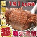 \タイムセール300円OFF/ジャンボ毛蟹 1尾1kg 超特...