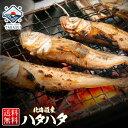 【マラソン限定特価⇒50%OFF】北海道産 ハタハタ 1kg...