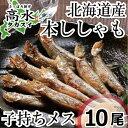 本ししゃも子持ち10尾 北海道日高産の本物のシシャモです♪ ...