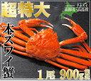 【超特大】ズワイガニ姿900g【ズワイガニ】【ずわいがに】【ズワイ蟹】