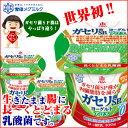 送料無料/ヨーグルト/恵 megumi ガセリ菌SP株ヨーグルト アロエ 100g 12個セット