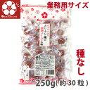 赤城フーズ 種とりカリカリ梅 1袋(40粒) (大粒) 種取物語 業務用サイズ 熱中症対策 種無し梅