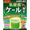 山本漢方 乳酸菌 お徳用 ケール粉末4g×30パック 青汁 てんさい オリゴ糖 食物繊維 野菜不足|