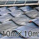 屋根瓦飛散防止ネット 100号 10m×10m(防災 台風 強風 突風 竜巻 防風 対策)【smtb-ms】