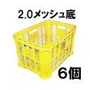 其它 - マル特AZ採集コンテナ2.0kg強化タイプ 黄色メッシュ底 6個単位 みかんコンテナーに[採集箱 瀧商店]