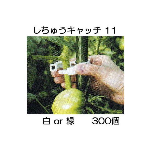 誘引資材 しちゅうキャッチ11(300個入) 白or緑 色選択 支柱径11mm用