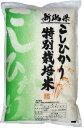 おいしい減農薬米 特別栽培米新潟産コシヒカリ 10kg 28年産(5kg×2袋)お米マイスター特選
