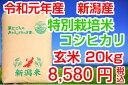 29年産 送料無料!新潟産特別栽培米コシヒカリ 玄米20kg(10kg×2袋)お米マイスター特選 贈