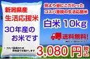【新潟産】30年産 生活応援米 10kg 送料無料!(地域限定)コスパ重視 業務用 未検査米 食べ盛りの子供家庭におすすめ(5kg×2袋)