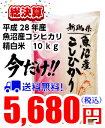 総決算!送料無料!魚沼産コシヒカリ 10kg 28年産(5kg×2袋)お米マイスター特選  最高級魚