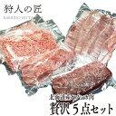 【北海道稚内産】エゾ鹿肉 贅沢5点セット【お中元・お歳暮・贈り物に!】【エゾシカ肉/蝦夷鹿肉/えぞしか肉/ジビエ】