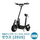 電動キックボード ZEUS [ゼウス] SLD_ZEUS1844