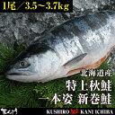 【北海道産】特上秋鮭 一本姿 新巻鮭 3.5kg〜3.7kg前後