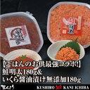 【ごはんのお供最強コラボ!】鮭明太180g&いくら醤油漬け無...