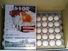 輝黄卵ホワイト Mサイズ 10kg【127個〜142個+破損保障30個】 鶏卵 国産 (約160個)たまご 一流シェフに選ばれています 新鮮