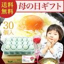 母の日超早割予約開始!送料無料2,999円!緑の一番星30個...