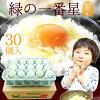 卵のイメージ