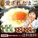 卵 食べ比べ 送料無料2,399円!新鮮愛されたまご3種お試...