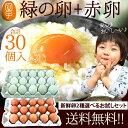 卵 食べ比べ 送料無料3,820円!新鮮愛されたまご2種選べ...