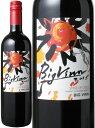 ビッグバン カベルネ・ソーヴィニヨン/メルロー [2016] <赤> <ワイン/チリ> ※ヴィンテージが異なる場合がございますのでご了承ください