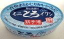 ミニとろイワシ味付100g(固形量70g)