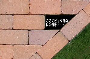 【加工代1カット108円】レンガ敷きの端っこをピッタリに収めるために・・・■カットするレン…...:tamatebako:10000052