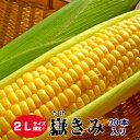 青森県産 嶽きみ 恵味(めぐみ) 2Lサイズ限定 20本(1...
