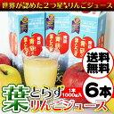【送料無料】★リンゴ ジュースランキング1位獲得★青研の葉とらずりんごジュース 1000g×6本入り 葉とらずりんご100 ストレート 100% りんごジュース