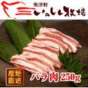 奥津軽 いのしし肉 バラ肉(スライス) 250g【SS】| ...