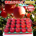 【送料無料】初夏に美味しい低温冷蔵りんご(CA)青森りんご 有袋ふじ 5kg 18-20玉前後 ≪ご