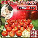 紅玉りんご 4kg(23-28玉前後)≪ご家庭用ランク 青森...