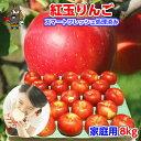 紅玉りんご 8kg(46-56玉前後)≪ご家庭用ランク 青森...